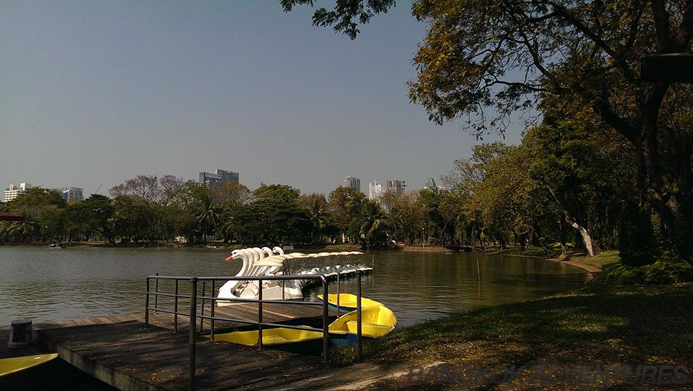 Paddle boats at Lumpini Park