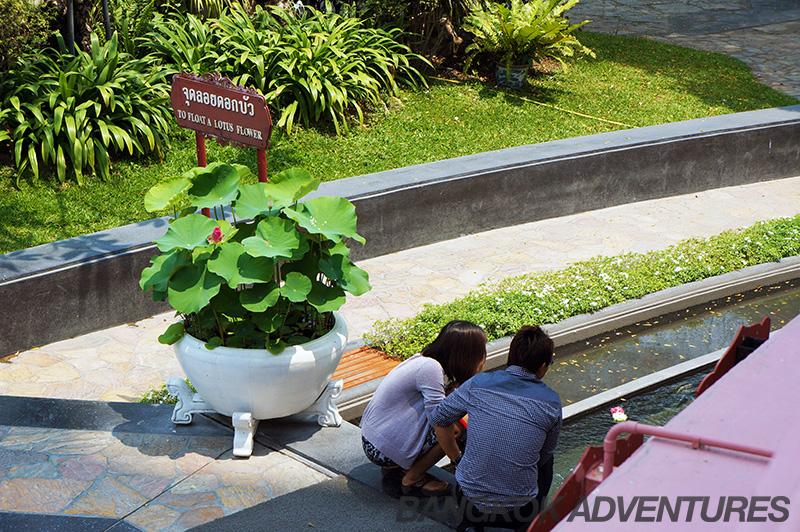 Floating a lotus flower at Erawan Museum