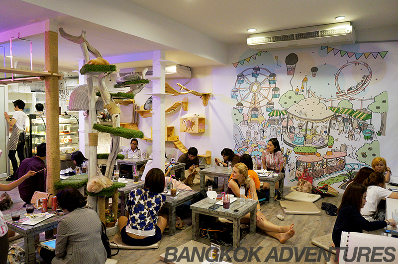 Lively atmosphere at the Caturday Cat Cafe in Bangkok