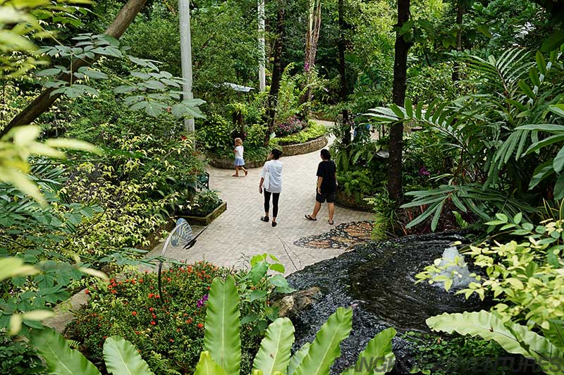 Lush gardens at the Bangkok Butterfly Park and Insectarium